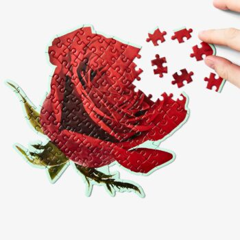 Little_Puzzle_Thing_Areaware_Smells_Rose_Geruch_Gerueche_Group_AWPTL4RO_onWhite_2048_1024x1024@2x